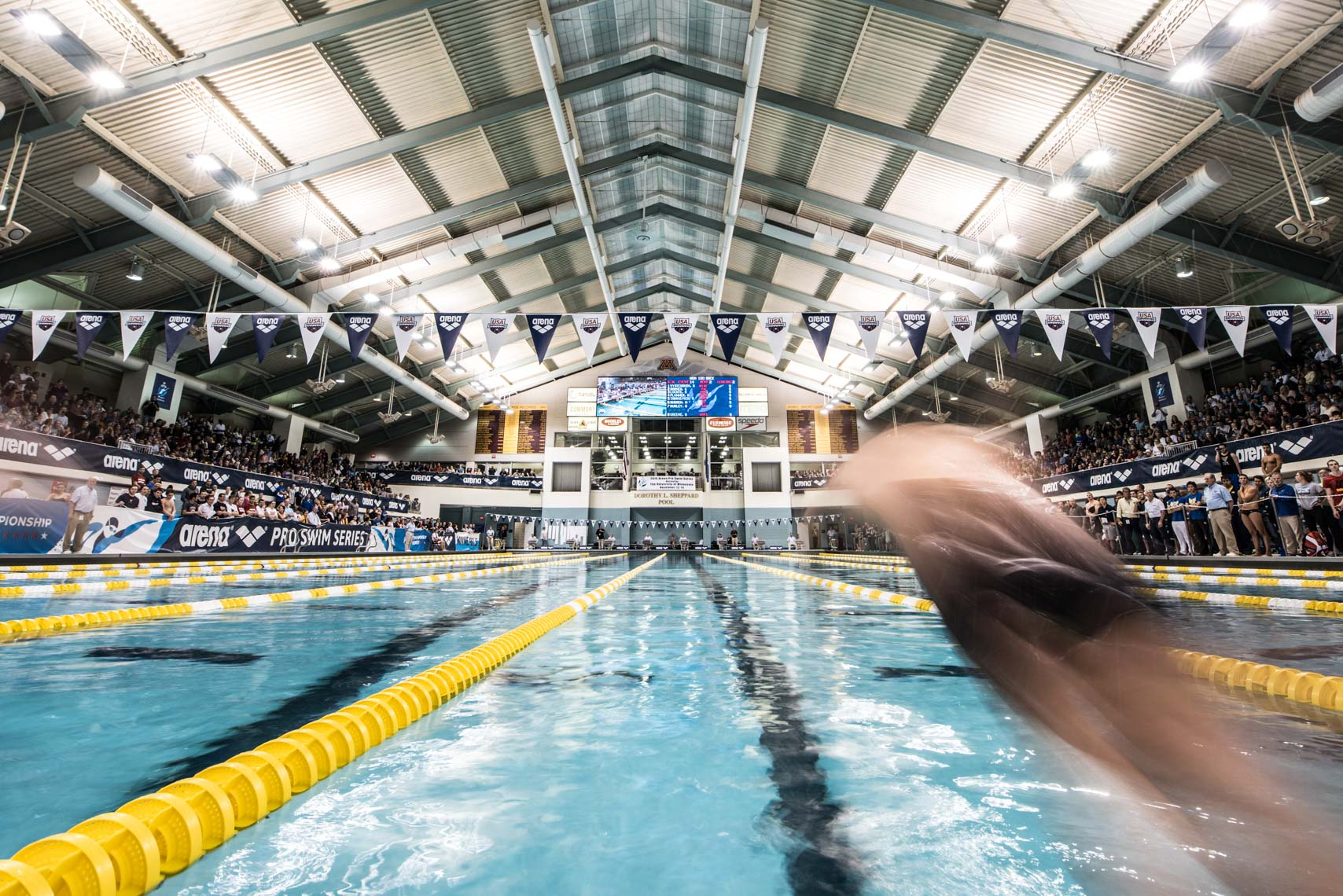 backstroke blur start stock by Mike Lewis