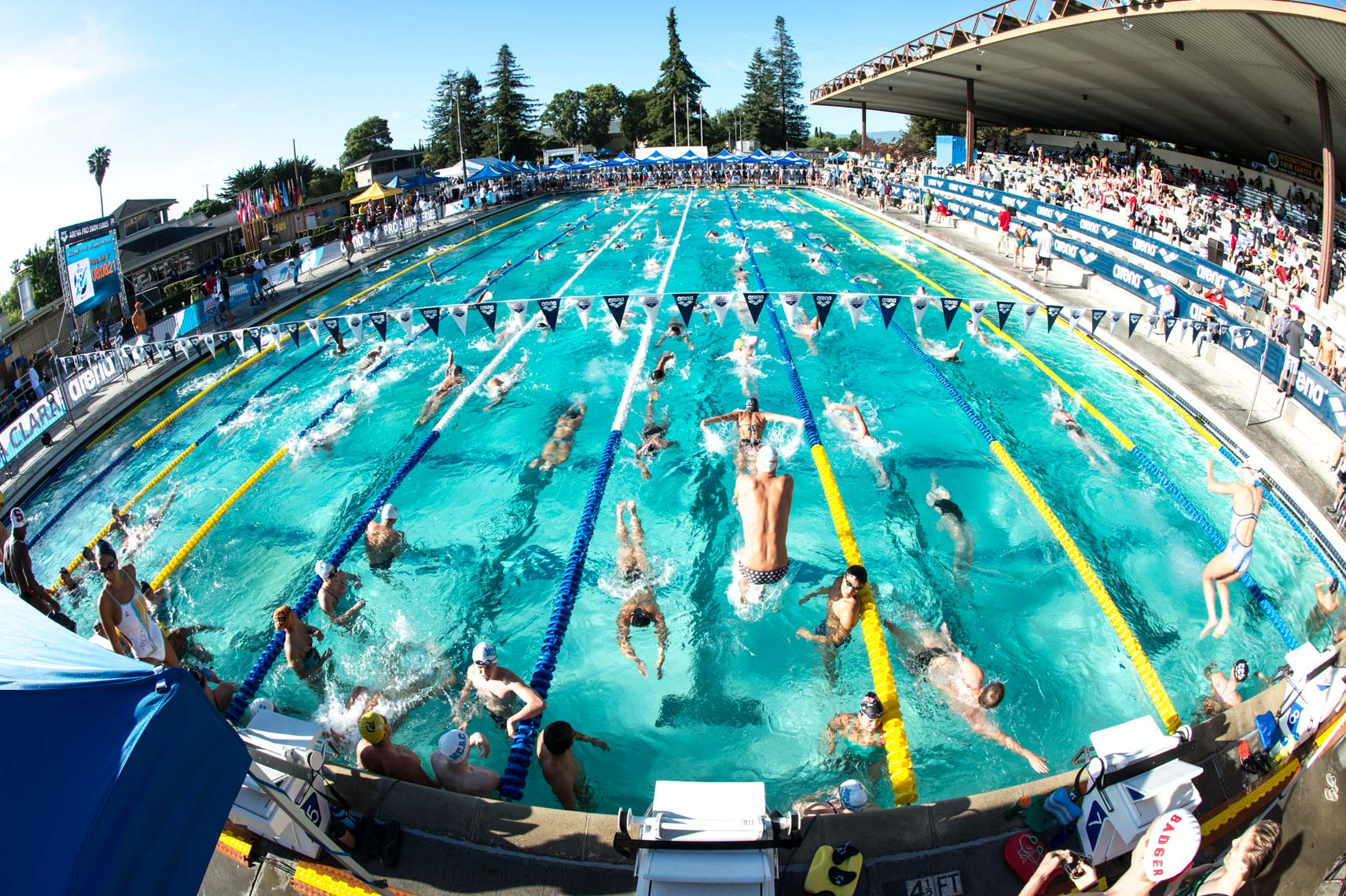 Arena Pro Swim Santa Clara Stock by Mike Lewis