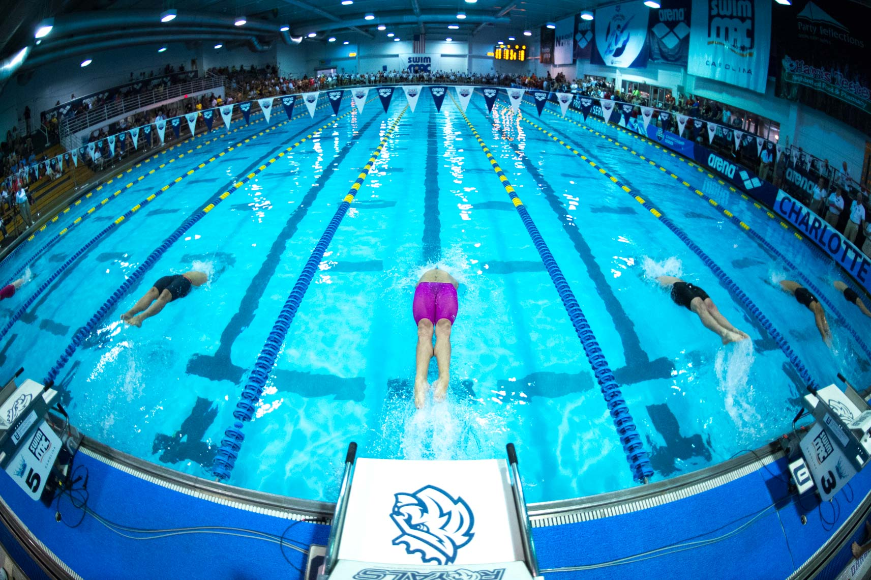 competitive swimming start