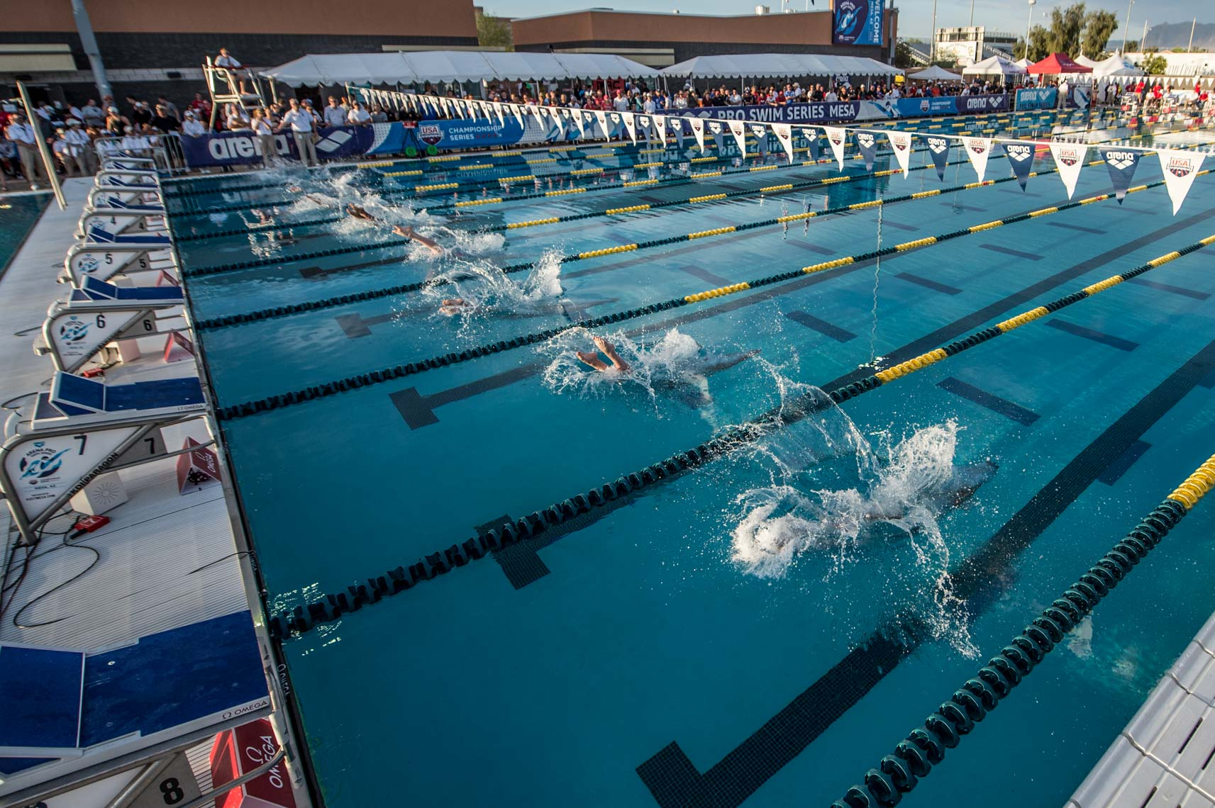 swimming start stock image